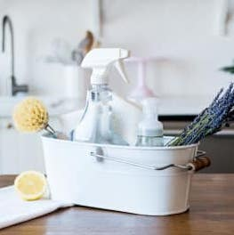 Sustainable Home Cleaning Class - FoodCraft Online Store