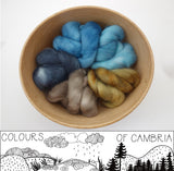 Colours of Cambria: Mountain - 100g Cambrian (Welsh x BFL) Wool - Hilltop Cloud