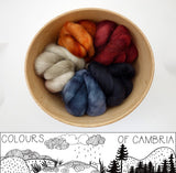 Colours of Cambria: Steam - 100g Cambrian (Welsh x BFL) Wool - Hilltop Cloud