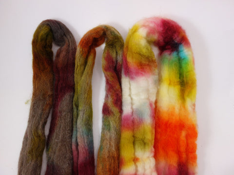 BFL Trio- Natural Gradient. Hand Dyed Combed Top 100g