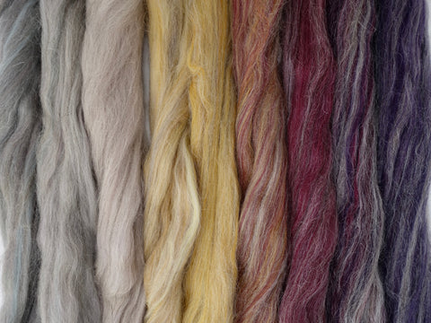 Carpet of Leaves Gradient Pack- Blended Spinning Fibre, Gradient Roving Set 140g 4.9oz