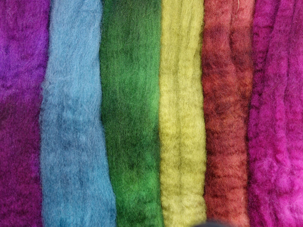 Dream Rainbow Pack- Devon BFL, 26 micron, Hand Dyed, Combed Top 120g