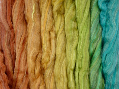 Hanging Pot Gradient Pack- Blended Spinning Fibre, Gradient Roving Set 140g 4.9oz