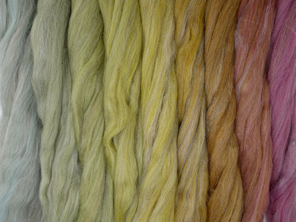 Leaf Collage Gradient Pack- Blended Spinning Fibre, Gradient Roving Set 140g 4.9oz