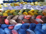 Dyers Half-Dozen - Ultra Fine 14.5 micron Merino, 6 co-ordinating mini braids, Hand Dyed Wool, 360g