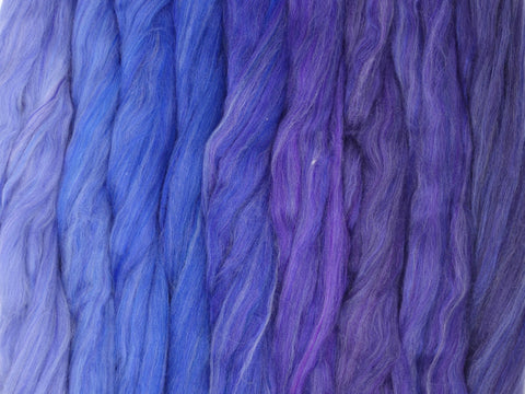Delphinium Gradient Pack- Blended Spinning Fibre, Gradient Roving Set 140g 4.9oz