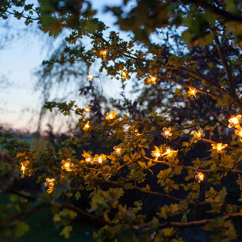 Solar Bloom String Lights For The Garden