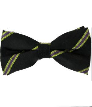 3 Batt. Royal Anglian Regiment (Steelbacks) Silk Non Crease Pretied Bow Tie - regimentalshop.com