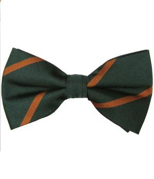 Devonshire and Dorset Regiment Pretied Polyester Bow Tie - regimentalshop.com