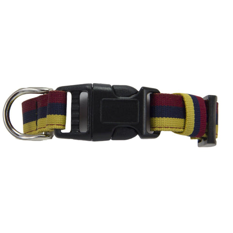 Royal Army Medical Corps (RAMC) Dog Collar