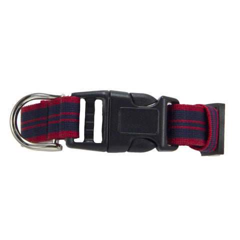 Royal Military Police Dog Collar