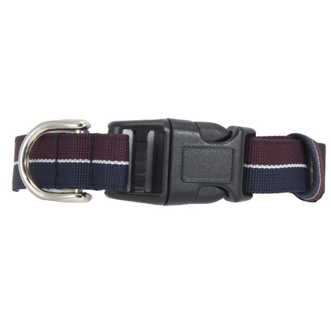 Queen's Dragoon Guards Dog Collar - regimentalshop.com