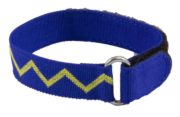 Royal Scots Dragoon Guards Vandyke Sports Watch Strap - regimentalshop.com