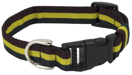 Royal Dragoon Guards  Dog Collar - regimentalshop.com