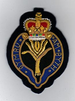 Welsh Guards (Dark) Blazer Badge
