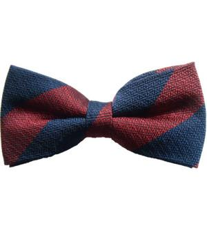 Household Division Silk Non Crease Pretied Bow Tie