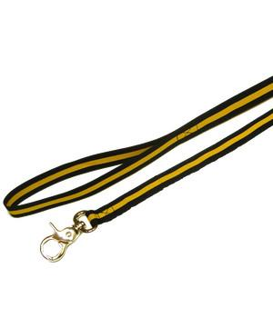 Princess of Wales's Royal Regiment Dog Lead
