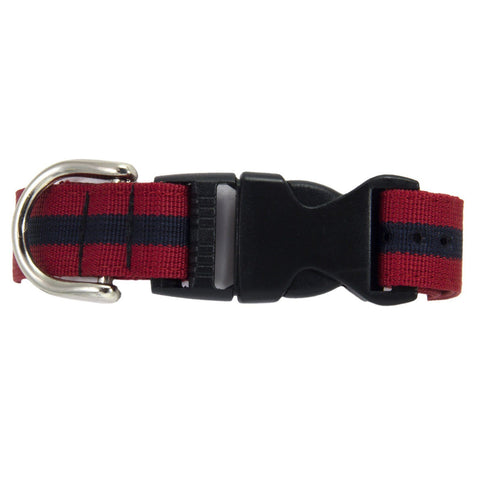 Adjutant General's Corps Dog Collar