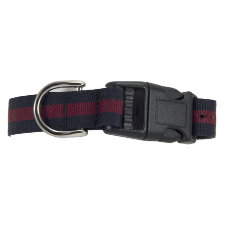 Household Division Dog Collar - regimentalshop.com