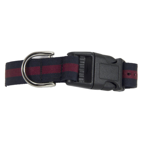 Household Division Dog Collar
