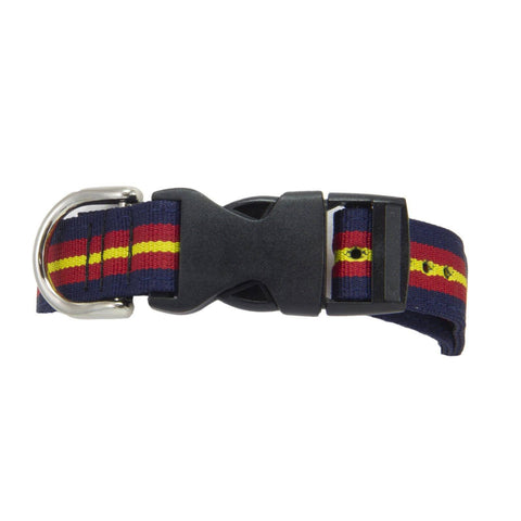 Royal Anglian Dog Collar