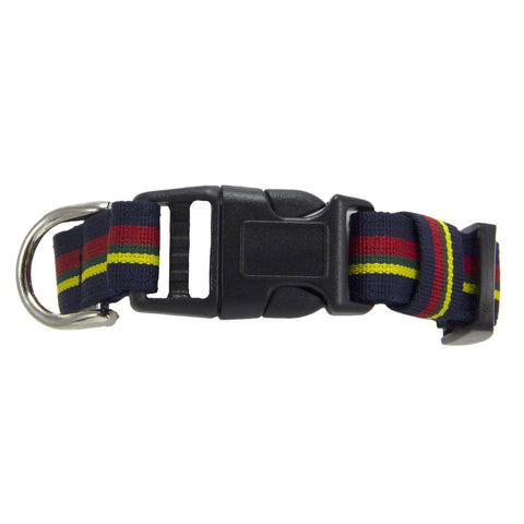 Royal Marines Dog Collar