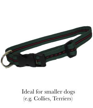 Yorkshire Regiment Dog Collar