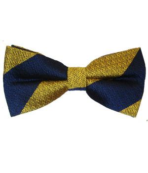 Princess of Wales's Royal Regiment Silk Non Crease Pretied Bow Tie - regimentalshop.com