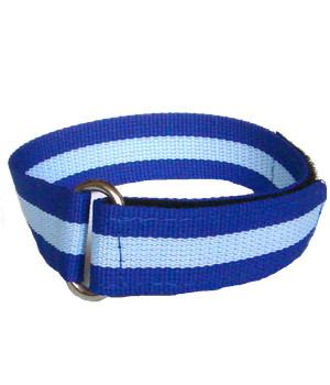 Army Air Corps Sports Watch Strap - regimentalshop.com