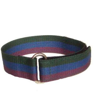 Royal Regiment of Scotland Sports Watch Strap - regimentalshop.com
