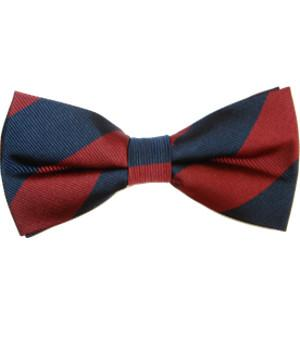Household Division Silk (Pretied) Bow Tie