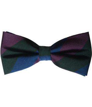 Royal Regiment of Scotland  Silk (Pretied) Bow Tie - regimentalshop.com