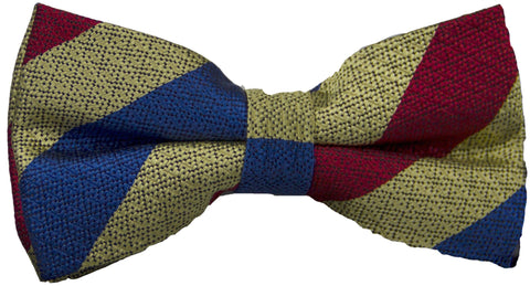 Queen's Dragoon Guards SAG Silk Non Crease Pretied Bow Tie - regimentalshop.com