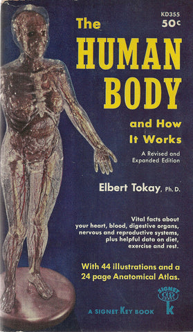 The Human Body and how it works