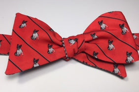 French Bulldog Bow Tie - black & white dog