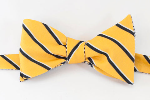 College Stripe - gold & black