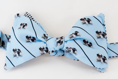 Shih Tzu Dog Bow Tie-blue
