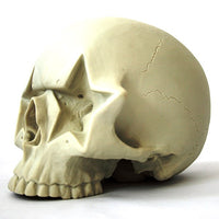 Bone Starskull Figure