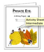 The Private Eye Activity Sheet 2.08: Writing Project (Level: Intermediate - Adult)