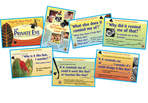 The Private Eye Inquiry Poster Set