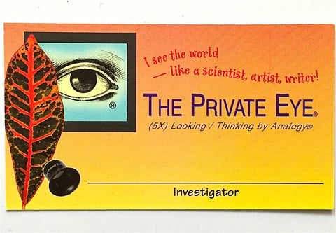 Private Eye Investigator Card - pack of 10 front view
