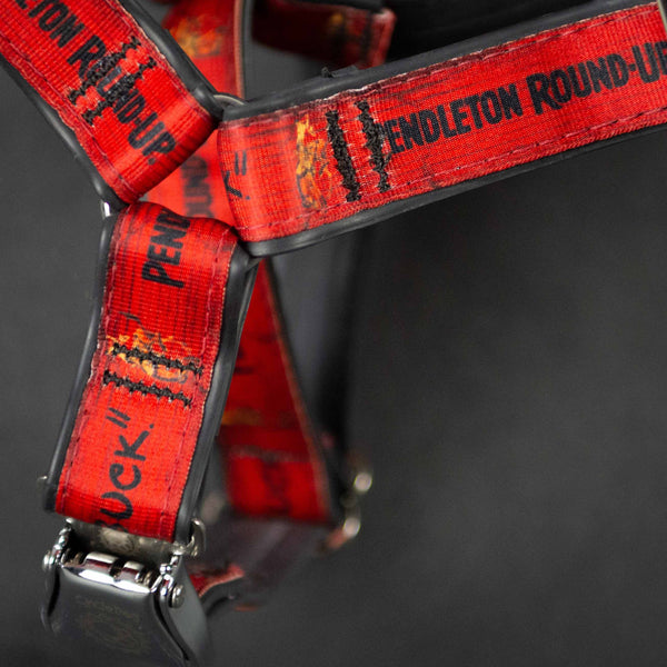 Pendleton Round-Up Cycle Dog Harness