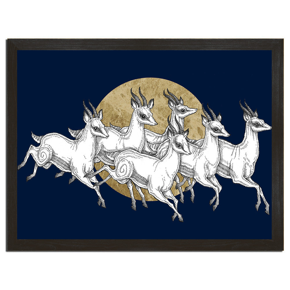 Gazelles Gone Wild Art Print