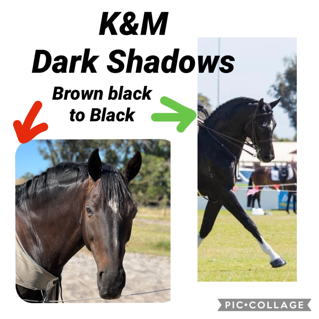 K&M Dark Shadow
