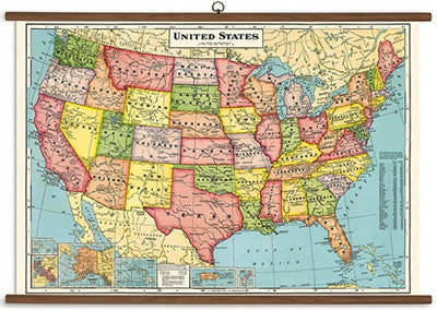 Vintage USA Classroom Map - Fritz and Sparrow