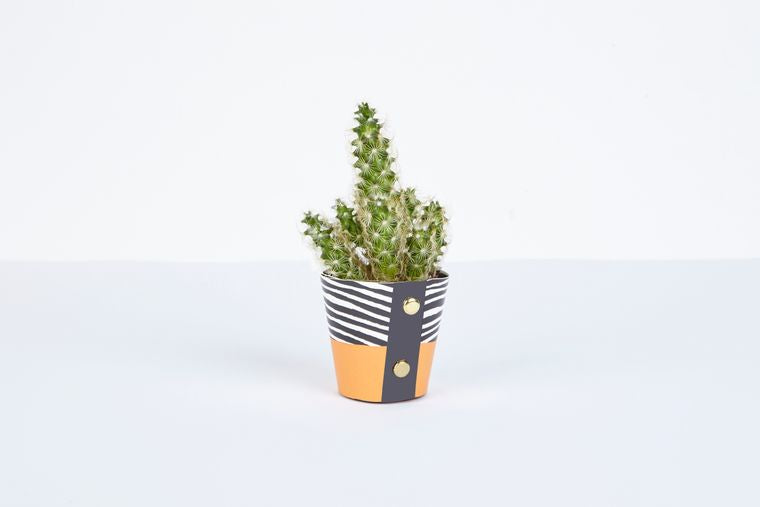 Wood Design Plant Pot Cover