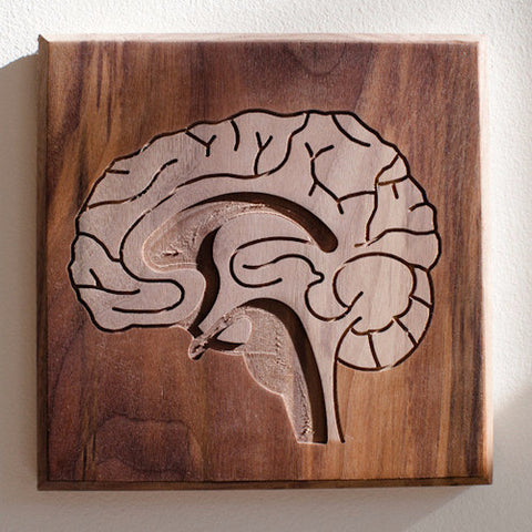 Routed Wood Brain