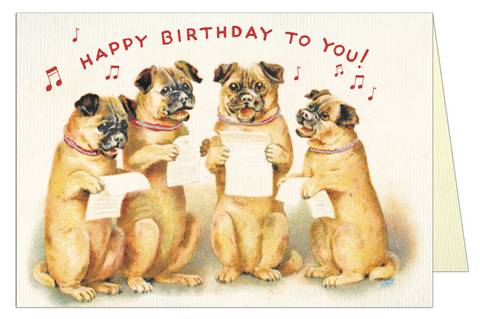 Happy Birthday Dogs card