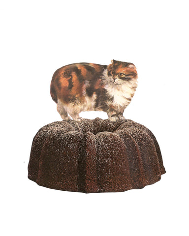 Cat on Bundt Cake Art Print