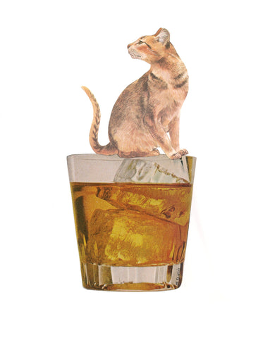 Cat on Shot Glass Art Print